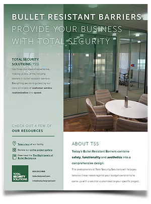 TSS_Company_Overview_Preview2_FIN-1.jpg